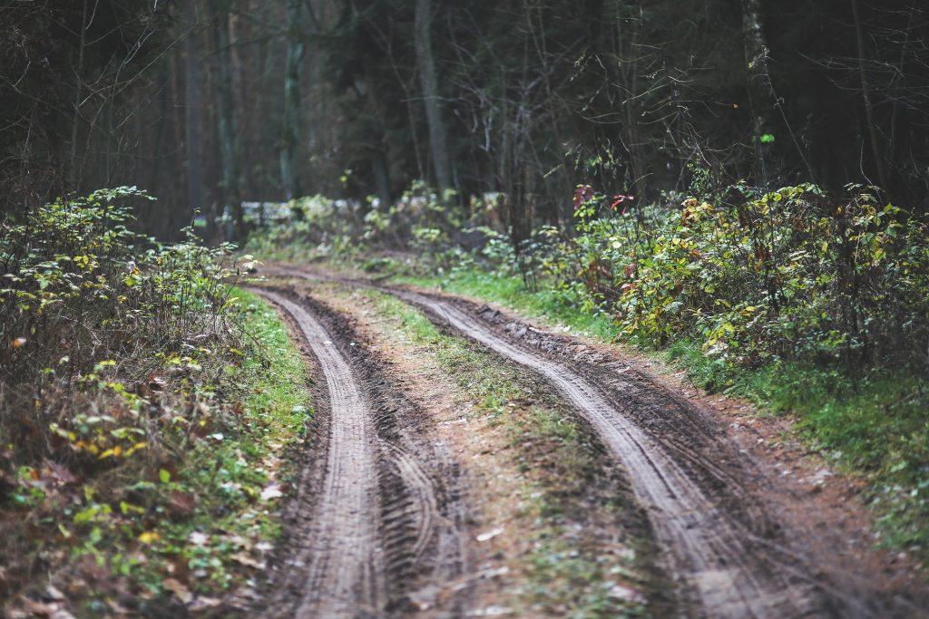chemin en forêt ©CODEVER