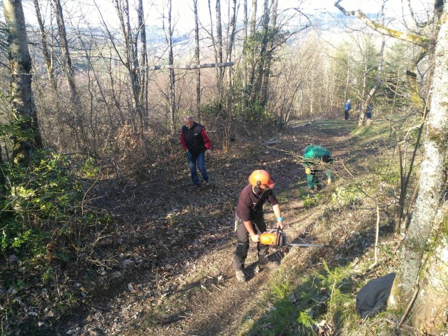 Journée des chemins, bénévoles taillant les branchages ©CODEVER